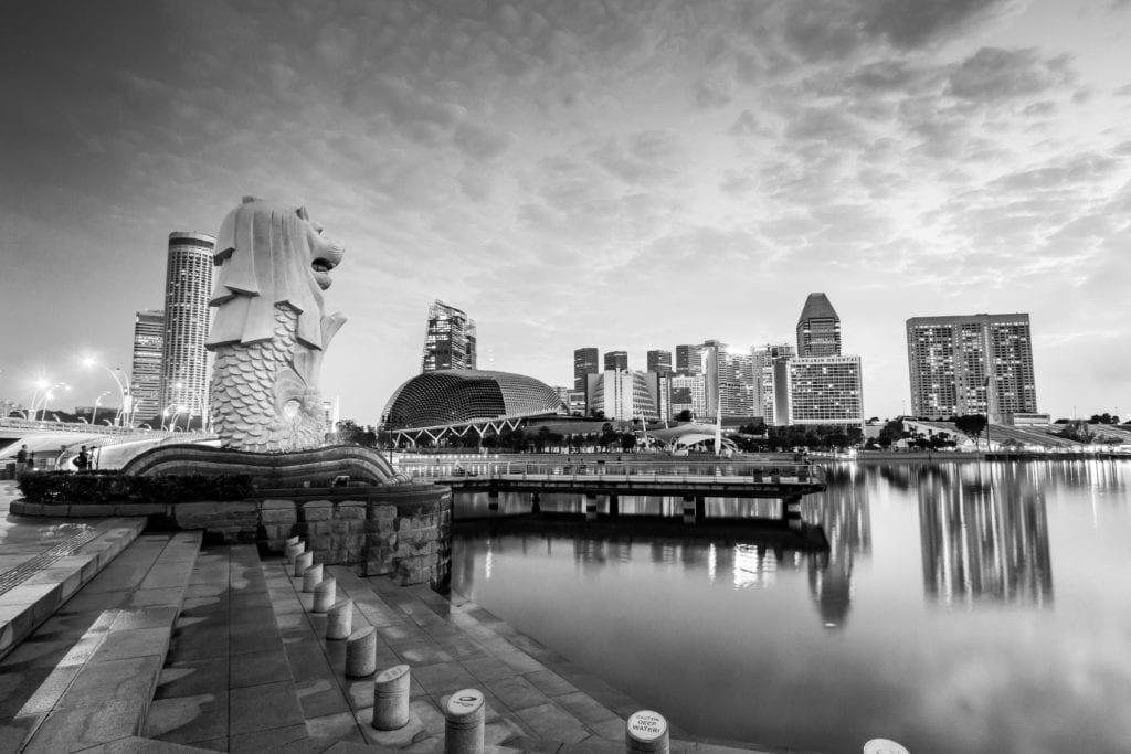 Singapore adopts Medical Device Unique Device Identifier